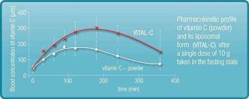 Liposomal Vitamin C, European Quality, Quali-C Vitamin C, Highest Bioavailability, Strong Collagen, Immune System Booster, Best Lypo Spheric Vitamin C to Support Anti Aging Skin